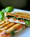 Sandwich con Plancha-Grill Profesional 220 cm